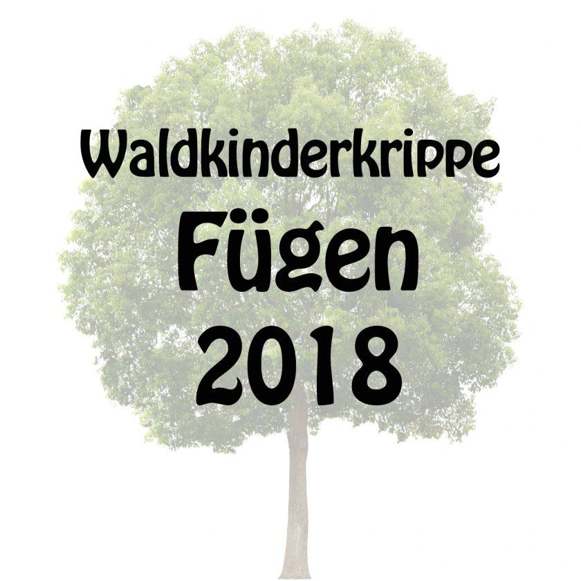 Waldkinderkrippe Fügen 2018
